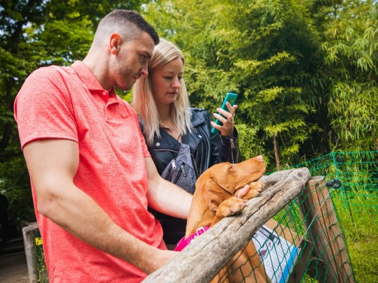 Pražská zoo - Noemova archa