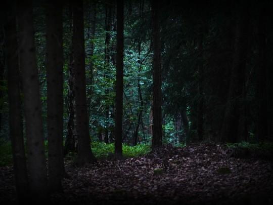 Lovci Duchů – Zakletá Stezka