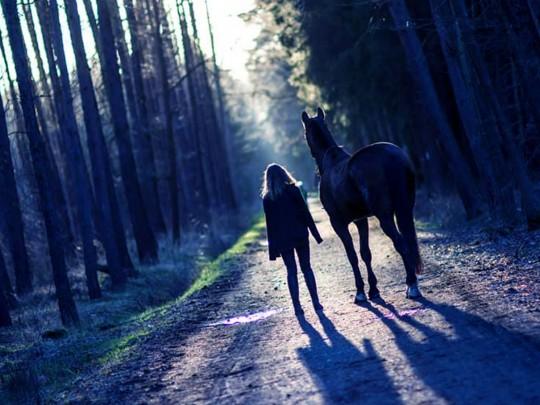 Lovci Duchů – Duch lesa